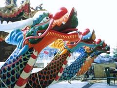 上海团建龙舟竞技
